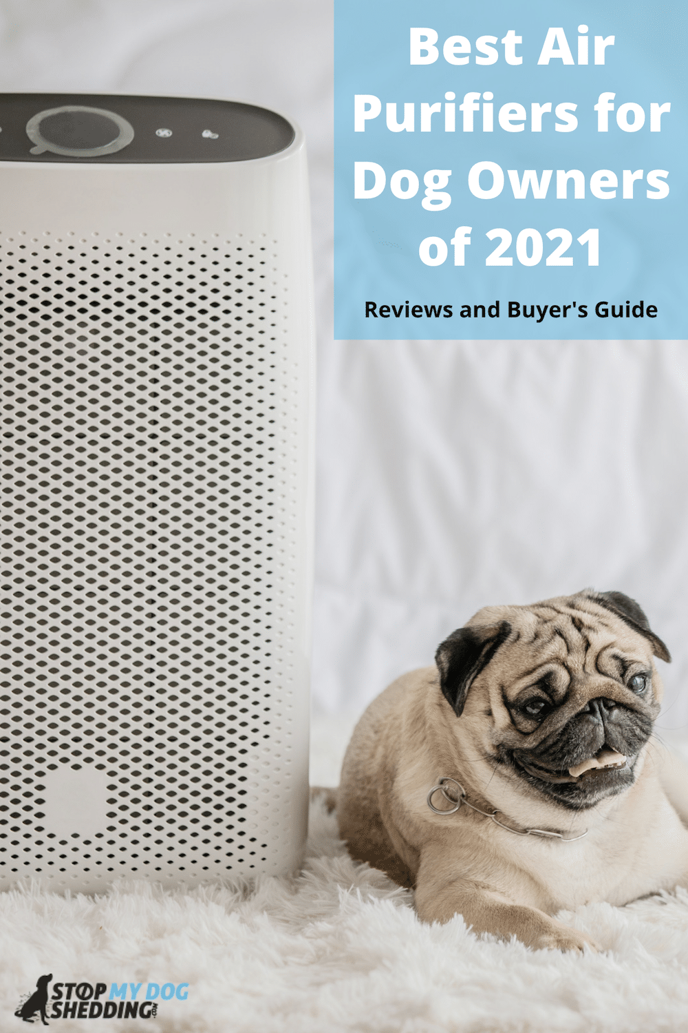 Top 5 Best Air Purifiers For Dog Owners (With Buyer's Guide)